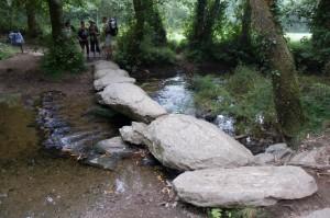Path turns into stones