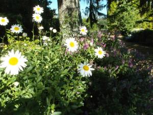 Gardens of Andeade