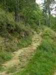 Purgatory path